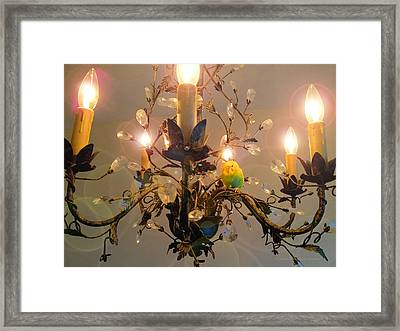 Cricket's Tree Framed Print