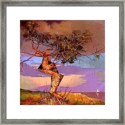 Crimean Pine Framed Print by Anastasija Kraineva