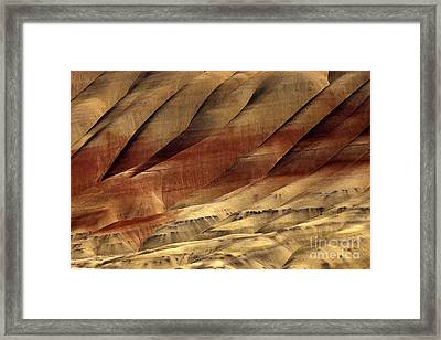Crimson And Gold Framed Print by Mike  Dawson