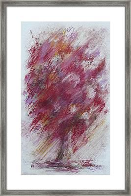 Crimson Bouquet Framed Print