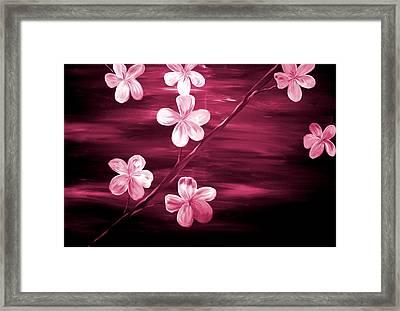 Crimson Cherry Blossom Framed Print