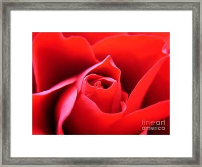 Crimson Framed Print by Patti Whitten
