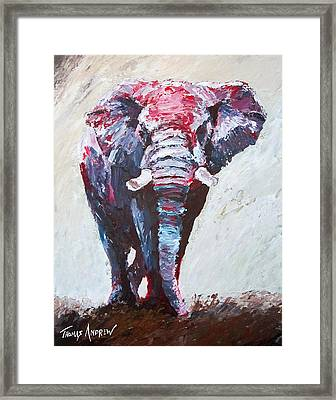 Crimson Shine Framed Print