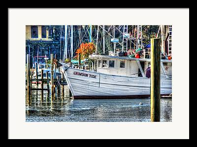Micdesigns Framed Prints