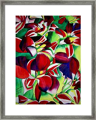 Crimson Tropical Singapore Orchids Framed Print by Sacha Grossel