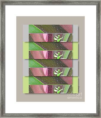 Framed Print featuring the photograph Crinum Lily Collage3 by Darla Wood