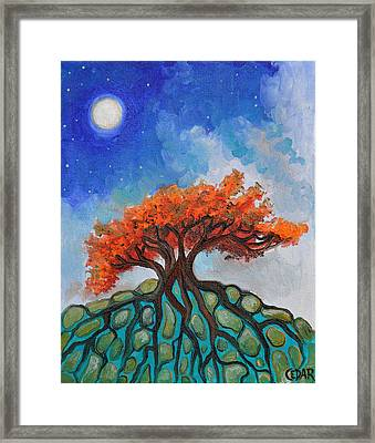 Crisp Autumn Night Framed Print by Cedar Lee