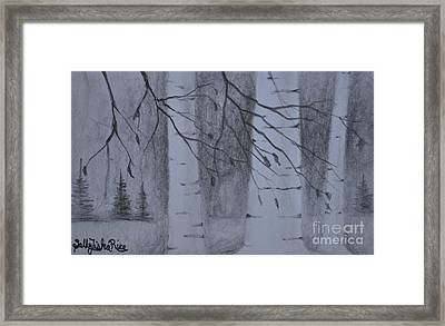 Crisp Evening Framed Print by Sally Rice