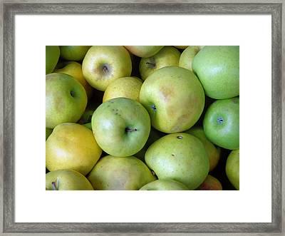 Crispin Apples Framed Print by Joseph Skompski