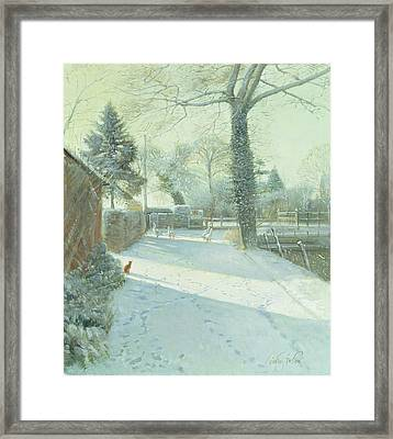 Criss-cross Oil On Canvas Framed Print by Timothy Easton