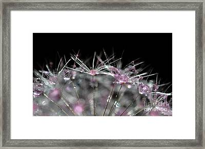 Framed Print featuring the photograph Cristal Flower by Sylvie Leandre