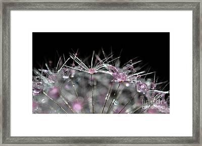 Cristal Flower Framed Print by Sylvie Leandre