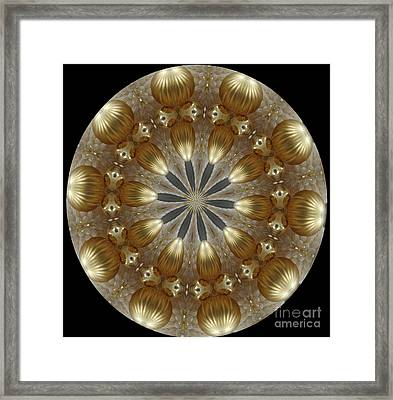Cristmas Decor Framed Print by Lena Photo Art