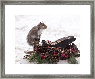 Critter Christmas Framed Print