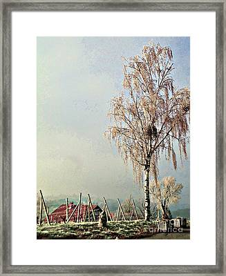 Croatia Hinterland Framed Print by Ann Johndro-Collins