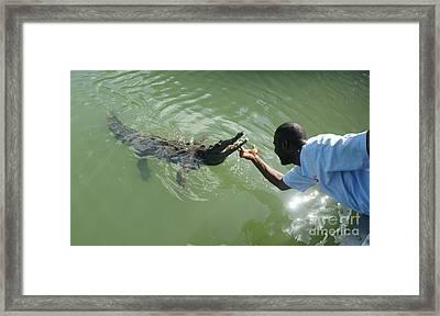 Crocodile Dundee Jamaica Framed Print by Olaf Christian
