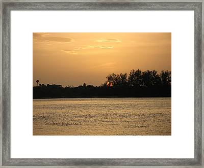 Crocodile Eye Framed Print by Kathy Barney