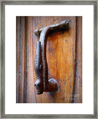 Crocodile Knock Framed Print by Lainie Wrightson