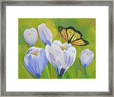 Crocus And Monarch Butterfly Framed Print