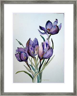 Crocus In April Framed Print by Mindy Newman