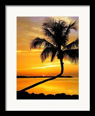 Jettys Framed Prints