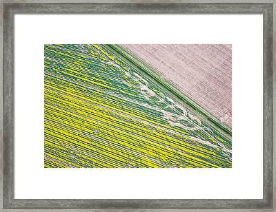 Crop Fields Framed Print by Tom Gowanlock