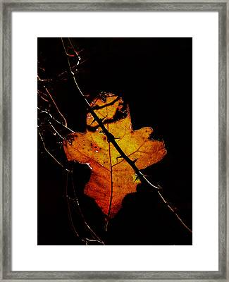 Cross And Thorns Framed Print