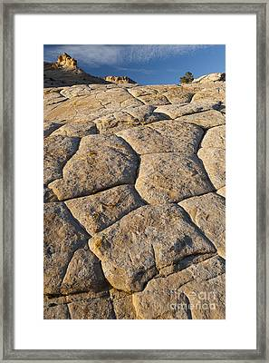 Cross-bedded Sandstone Slickrock Framed Print by John Shaw