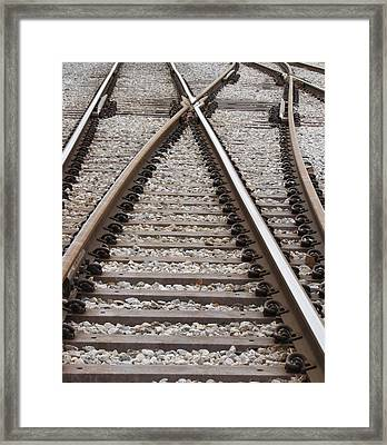 Framed Print featuring the photograph Crossing by Beth Vincent