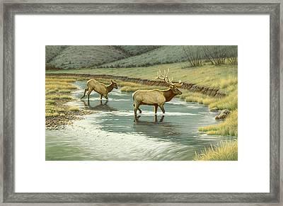 Crossing The Gardiner Framed Print