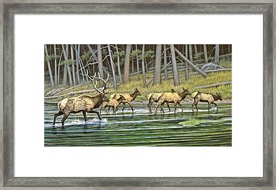 Crossing The Gibbon Framed Print