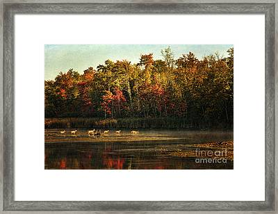 Crossing The Lake Framed Print