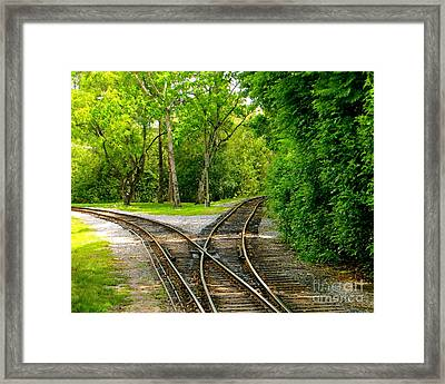 Crossing The Lines Framed Print by Joy Hardee