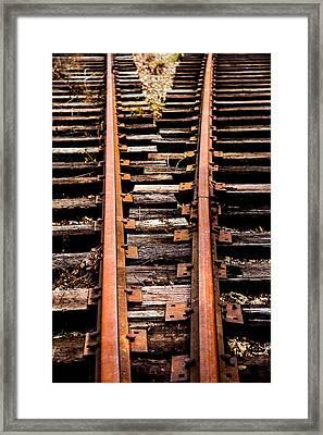 Crossing Tracks Framed Print by Karol Livote
