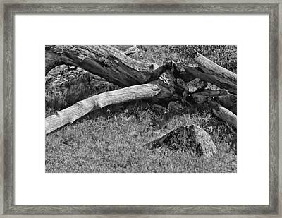 Crossroad Framed Print