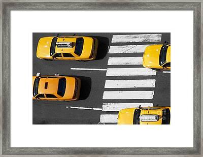 Crosswalk Framed Print by Dan Holm