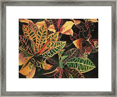 Croton Leaves Framed Print by Judy Swerlick