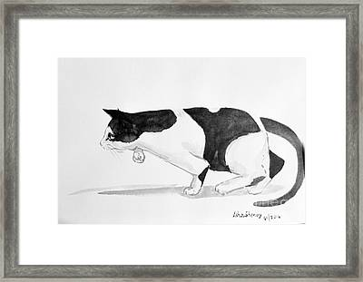 Crouching Cat Framed Print