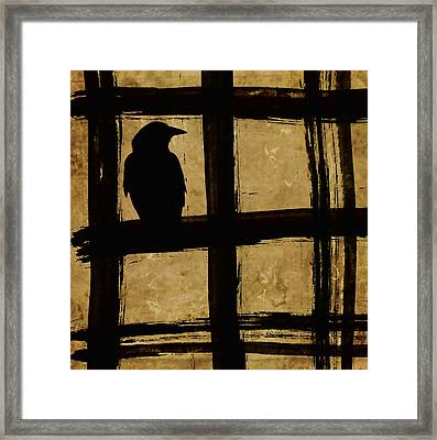 Crow And Golden Light Number 1 Framed Print by Carol Leigh