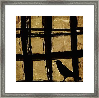 Crow And Golden Light Number 2 Framed Print by Carol Leigh