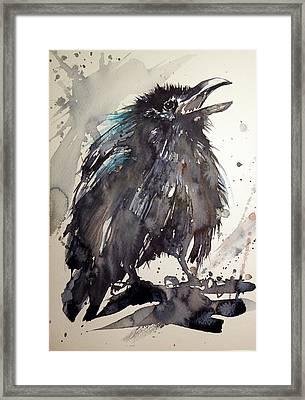Crow Baby Framed Print by Kovacs Anna Brigitta