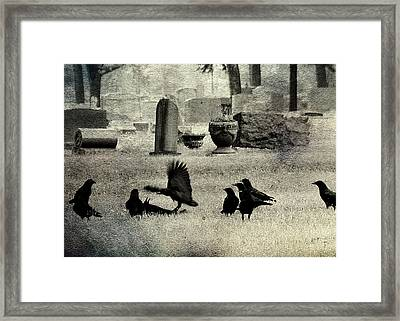 Crow Fight Framed Print