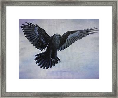 Crow Flight Framed Print