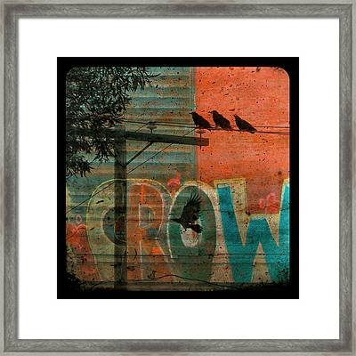 Crow Graffiti  Framed Print