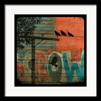 Urban Crow Collage Framed Prints