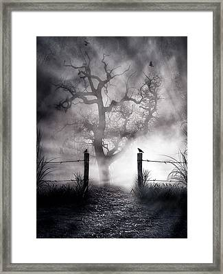 Crow Hallow Framed Print by Peter Chilelli