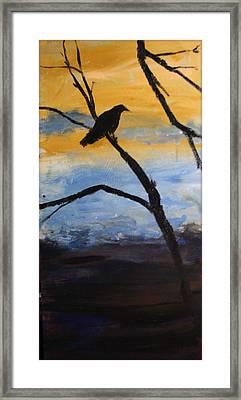 Crow IIi Framed Print