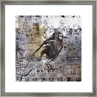 Crow Number 84 Framed Print by Carol Leigh