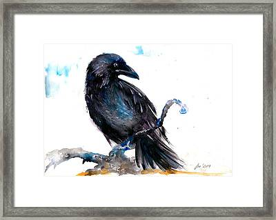 Crow Resting - Bird Art Watercolor Framed Print by Tiberiu Soos