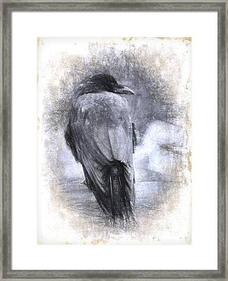 Crow Sketch Painterly Effect Framed Print by Carol Leigh